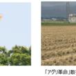 「新潟県トキ保護募金」、「佐渡市トキ環境整備基金」へ寄付金贈呈