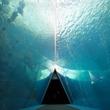 激レアな生き物たちに出会える!東北最大の体験型水族館「アクアマリンふくしま」