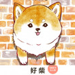 全柴犬好きに贈る! SNSで大人気のオール柴犬コミック『しばいぬのあたちたち』7月31日(水)発売!!