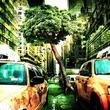 都会の緑地、どちらの自然がメンタルヘルスに効果的なのか?大きな木々と青々と広がる草地(オーストラリア研究)