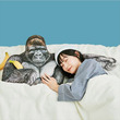 すごいの出た 東山動植物園のイケメンゴリラ「シャバーニ」の腕枕クッションがフェリシモから誕生