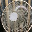 「ほとんど品切れ」「入荷も未定」 札幌の家電量販店から扇風機が消えつつある