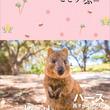世界で最も住みやすい都市&大自然が作り出す世界自然遺産の宝庫 人気ガイドブック『ことりっぷパース 西オーストラリア』発売