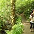 肩こり・メタボ改善に山歩き!8月11日(日)朝7:00放送「健康カプセル!ゲンキの時間」