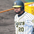 【MLB】元阪神ロサリオ、3Aで17号2ラン含む2安打3打点! 打率.315、17本塁打72打点と好調維持