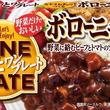 野菜がたっぷりとれる煮込み料理 日本人向きに「ボローニャライス」