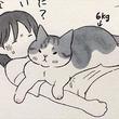 「飼い主どうしたのー?」 体調不良のときに限ってグイグイくる猫ちゃんたちを描いた漫画がいとおしい