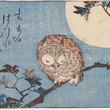 鳥の新たな魅力を発見 広島県の海の見える杜美術館で「美術の森でバードウォッチング」開催中
