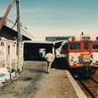 「ワイド周遊券」の魅力を振り返る 1980年代の鉄道旅行節約テク、現在はほぼ無理?
