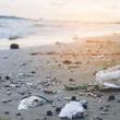 今、世界で起きている「海洋プラスチック」の問題を真摯に受け止め、ステンレス製のエコストローを導入開始!!