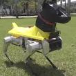 おすわりも伏せもできる!人命救助用犬型ロボット「アストロ(Astro)」の犬化がすごい!(アメリカ)