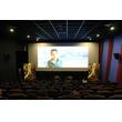 中国の観客の好みに変化、どの時期にどんなジャンルの映画を見ている?―中国メディア