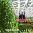 千葉大生が農業とエネルギーの未来を考える「営農型太陽光発電」の見学会を企画