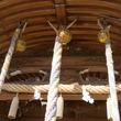 神社で「国旗が気にくわない」 塩を何度もまいた高齢者を、神社が確保