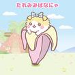 アニメ「ばなにゃ」はテレ東「きんだーてれび」で放送、ナレーションに優木かな