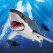 """【鮫】""""ホホジロザメ""""や""""シュモクザメ""""の可動フィギュアが登場。アゴとヒレが動かせる。シャチもいる"""