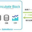 アグレックス、業界・業種特化型テンプレート「Incubate Block」にAI棚割画像認識サービス「棚SCAN(R)-AI」との連携機能を追加