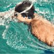 AfterShokz、水泳向け骨伝導MP3プレーヤー「Xtrainerz」に新色「サファイアブルー」を追加