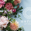 ギフトセレクトショップ『antina gift studio』が百貨店ギフトサロンとのコラボスタイルで大丸心斎橋店 本館に9月20日(金)OPEN