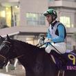 【レディスプレリュード】JRA出走予定馬