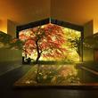 星野リゾート 界、紅葉に酔いしれる温泉旅動画を公開!