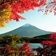 300年眠る日本の活火山・富士山、噴火したらどうなってしまうのか=中国メディア