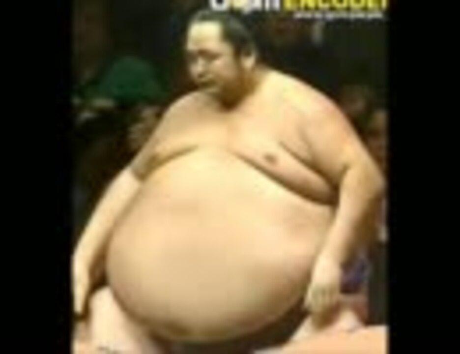Onokuni's big belly Slideshow New-2 大乃国の大きすぎるお腹 ...