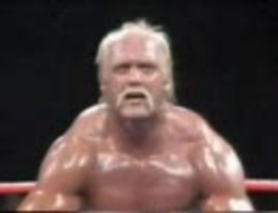 プロレス・WWF】 ハルク・ホーガン vs テッド・デビアス - ニコニコ動画