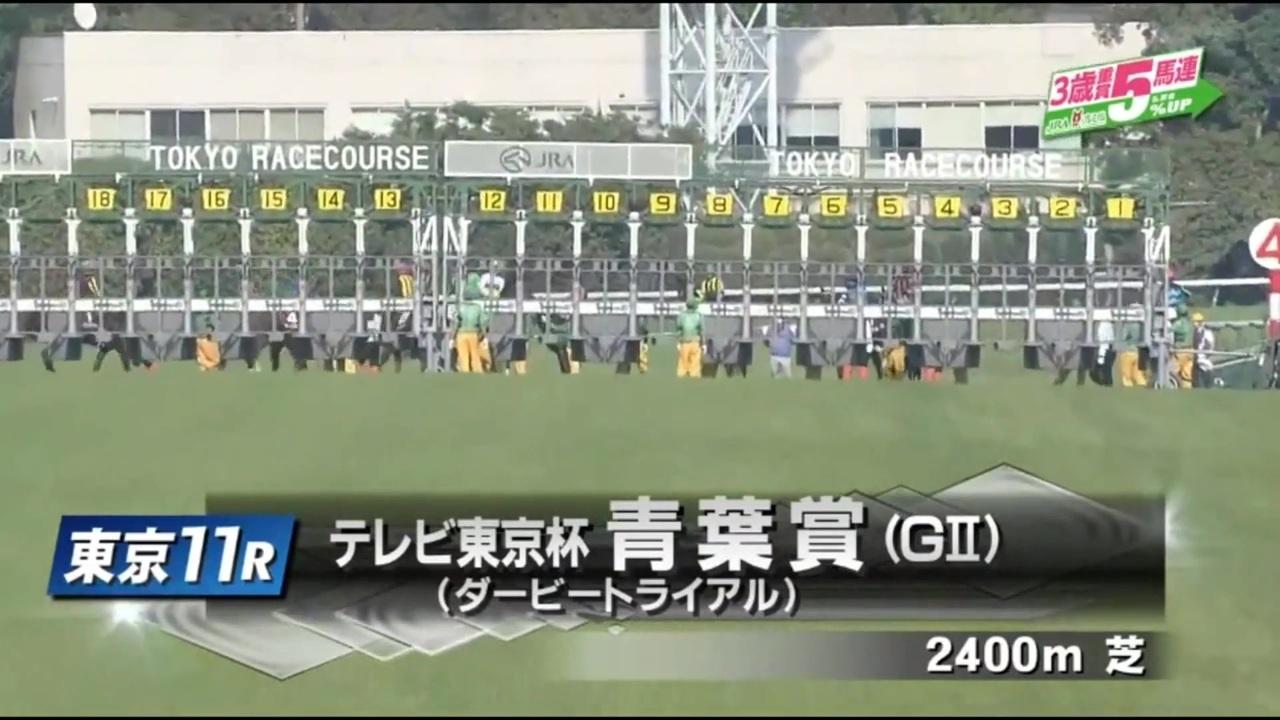 テレビ 東京 杯 青葉 賞