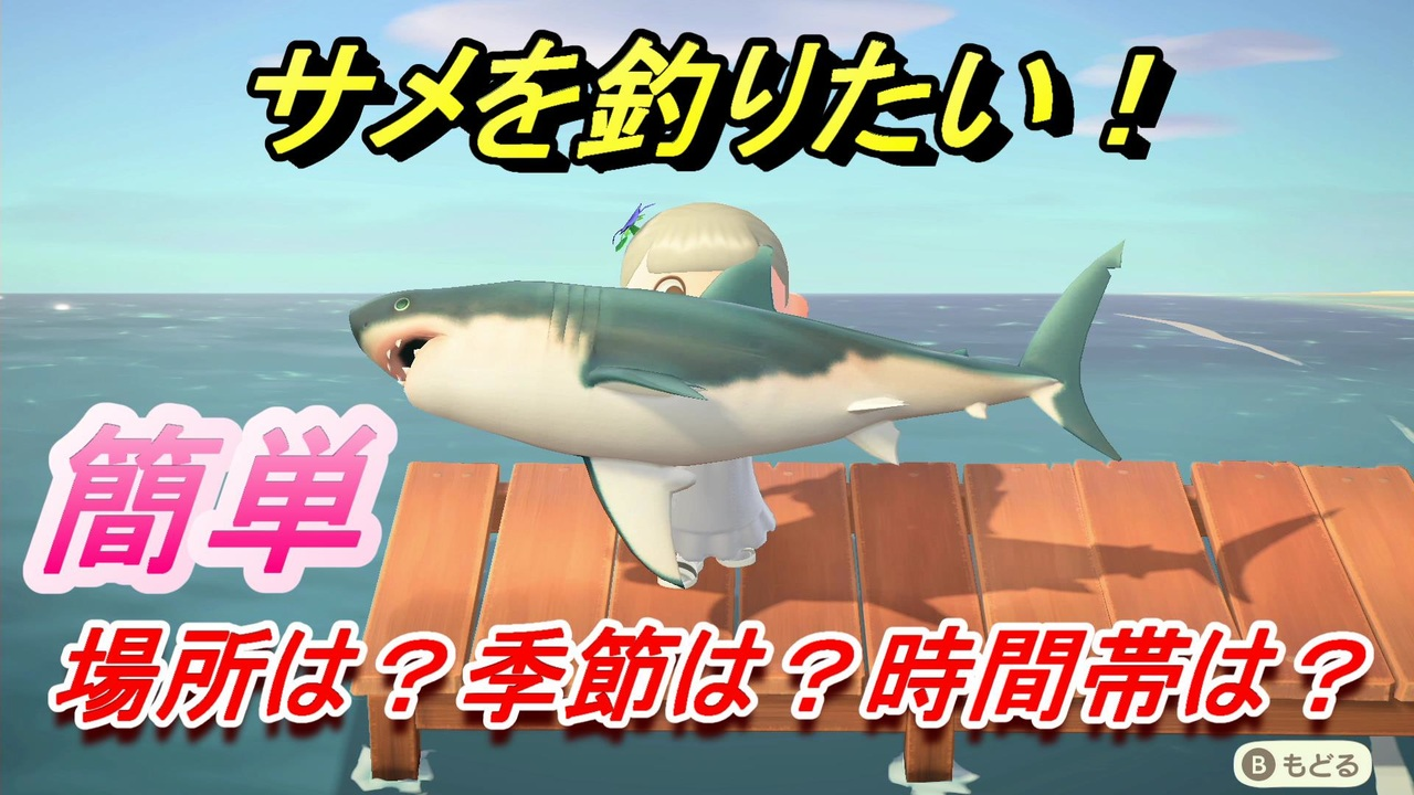 あつ 森 サメ 値段