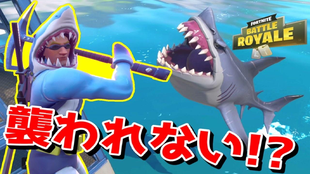 ナイト 方 フォート サメ 乗り