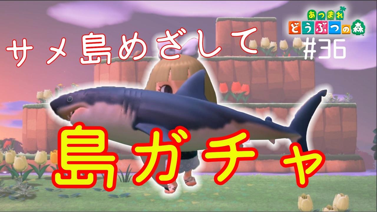 の サメ どうぶつ 島 森 あつまれ