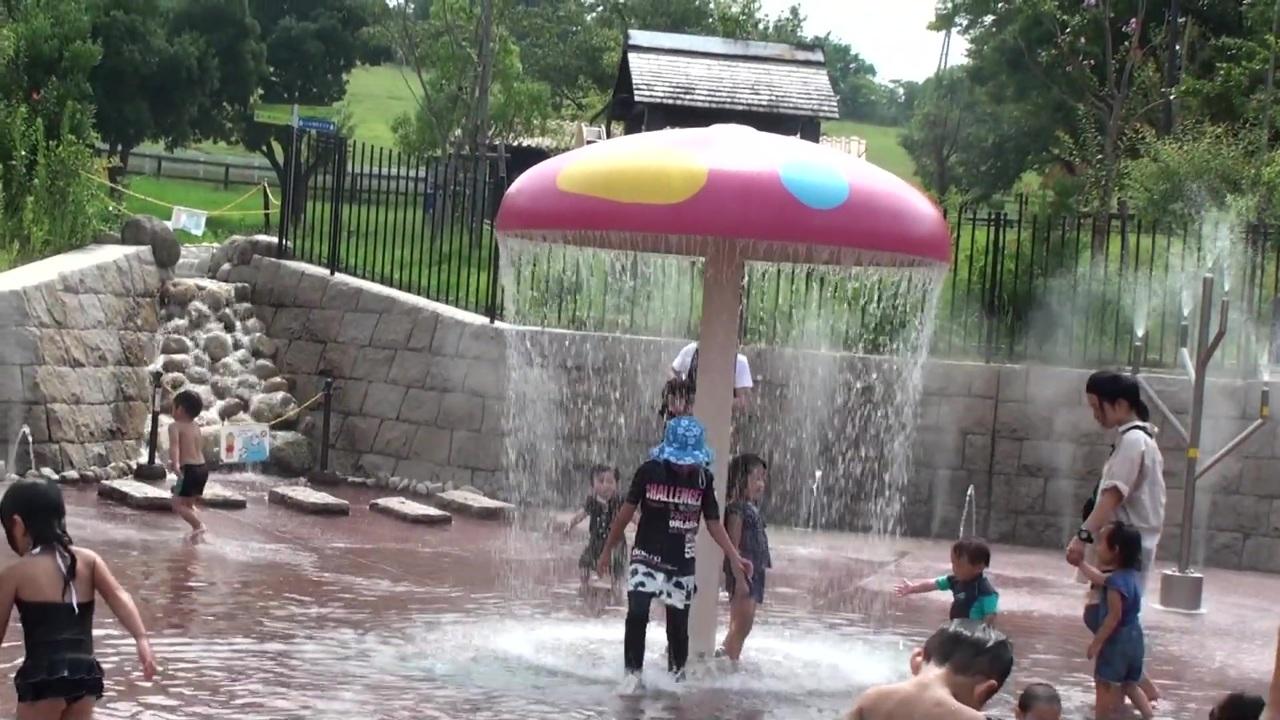 丘 ハーベスト 水遊び の