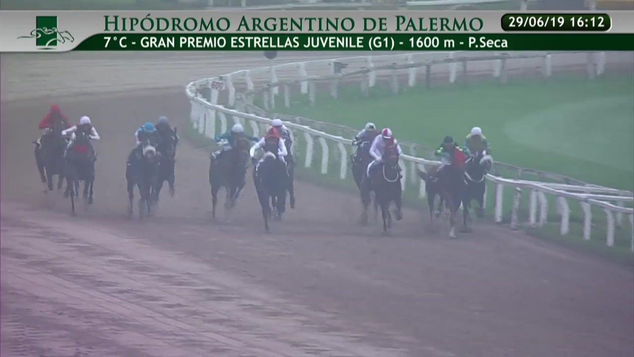 ゴールド アグネス ブラジル産アグネスゴールド産駒が米G1初制覇