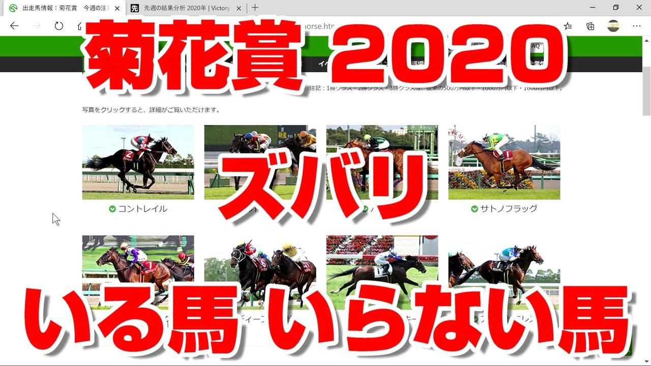 2020 菊花賞
